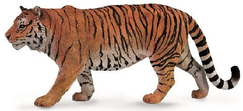 Theo the Tiger