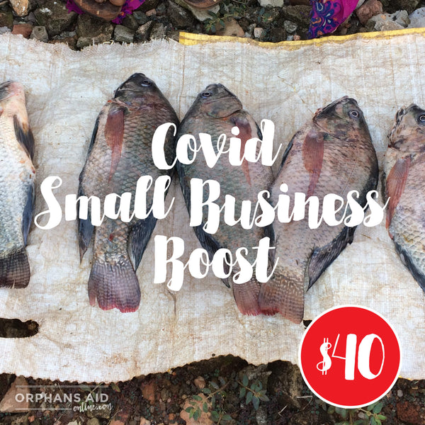 Covid Small Business Boost