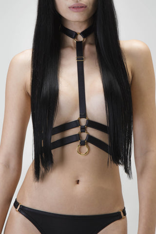 Chain hoop harness