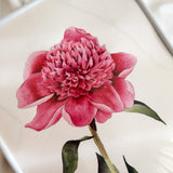 Peonies Watercolour Workshop - artjamming, Boulevart - Boulevart