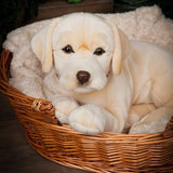 Living Nature Giant Golden Labrador Hund 46 cm (stor)