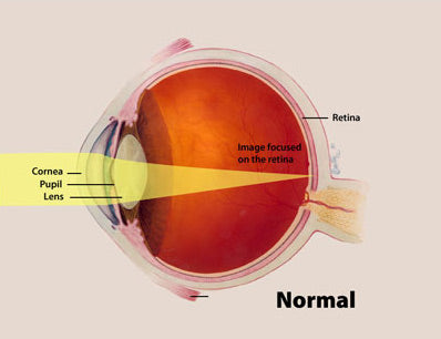 normal eyesight