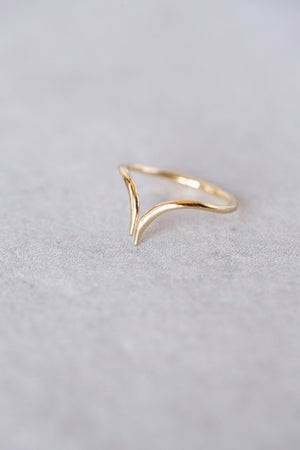 Adjustable Dip Ring