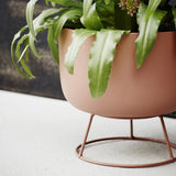 Plant pot with stand - Solsken