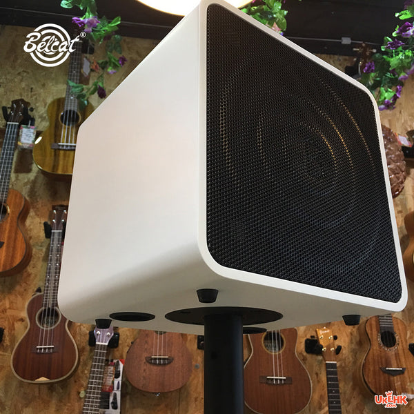 Belcat Busker Box - Acoustic Portable Amplifier