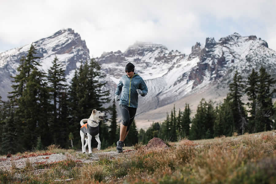 Trail runner runs at base of Broken Top Mountain with dog in climate changer fleece.