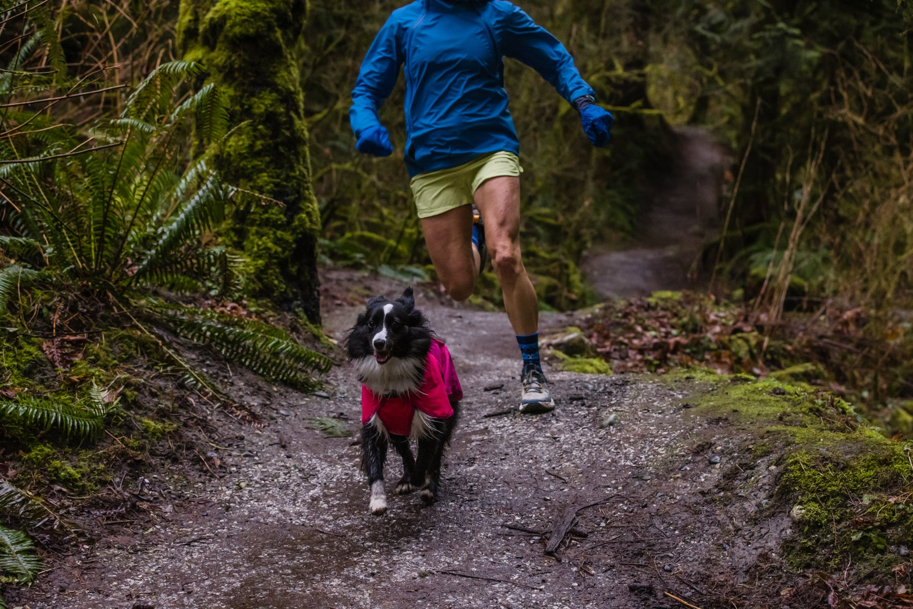 Krissy trail running with her dog PD that's wearing a pink Sun Shower Dog Rain Jacket