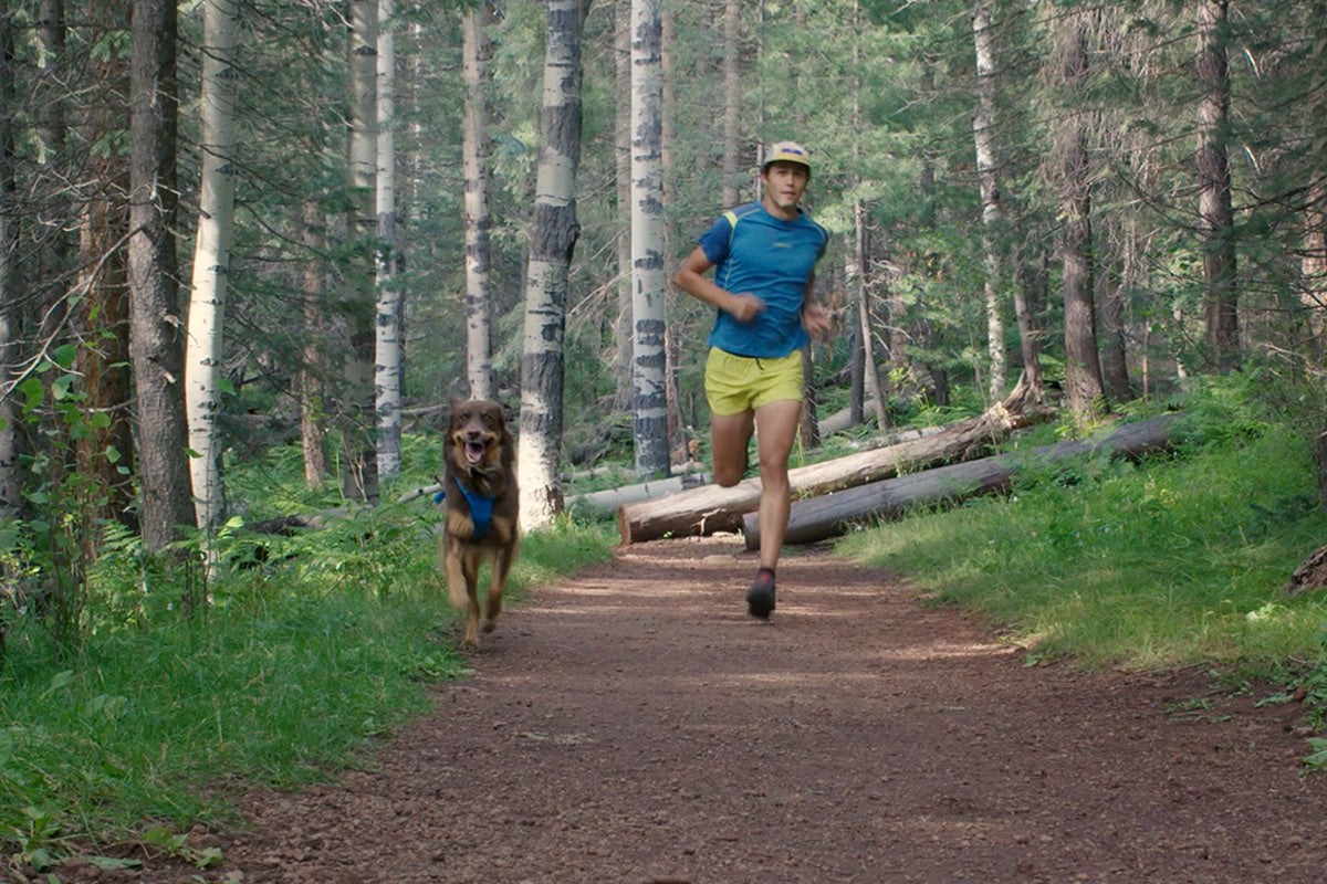 Nico and Sol run along trail in front range dog harness with front clip.