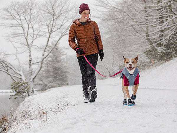 Woman walks her dog in the snow, dog is wearing a climate changer fleece layered under overcoat dog utility jacket and polar trex boots.