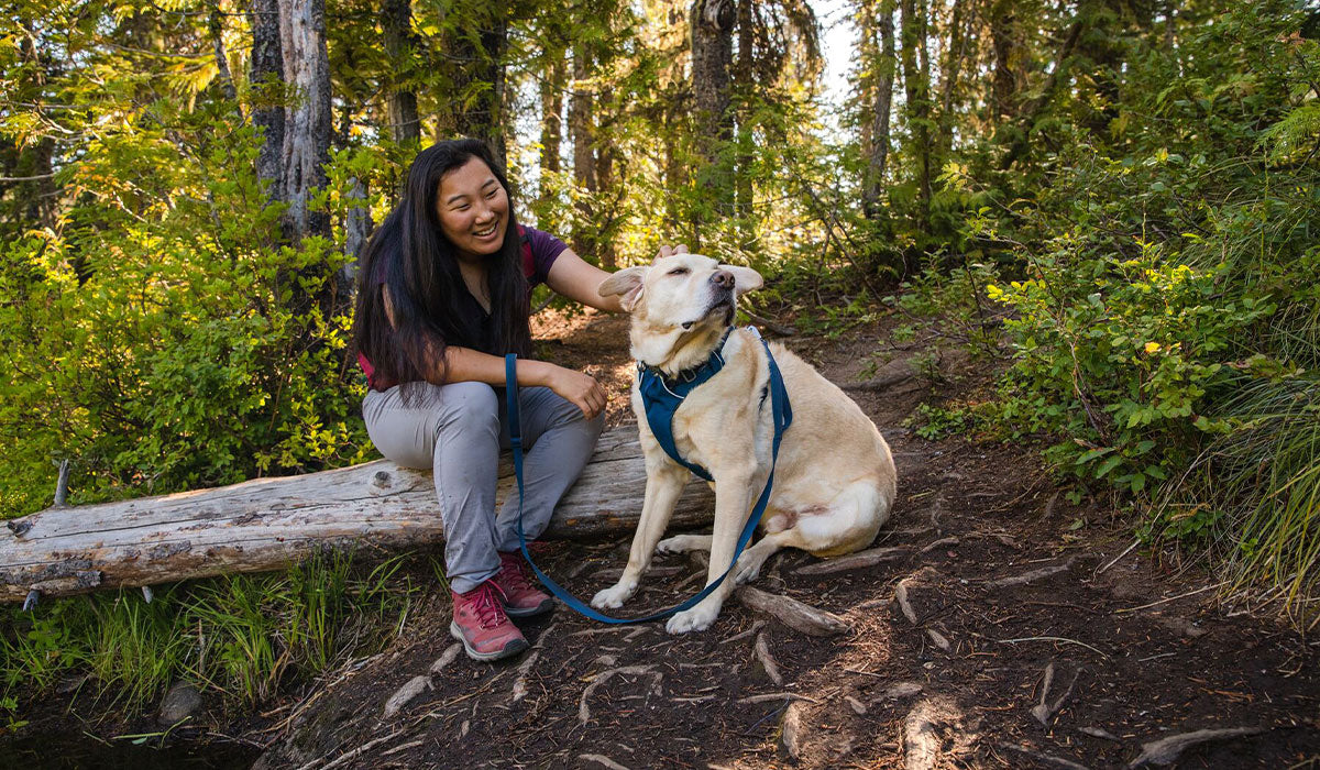 Woman sits on log on trail petting her dog in blue moon front range harness and matching eash.