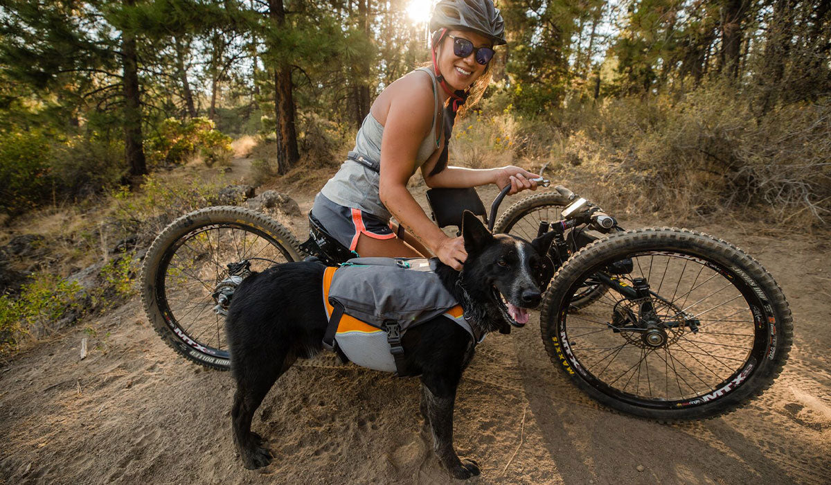 Anna takes a trail break on her off road hand cycle next to dog Bernie in Jet Stream and switchbak dog harness.