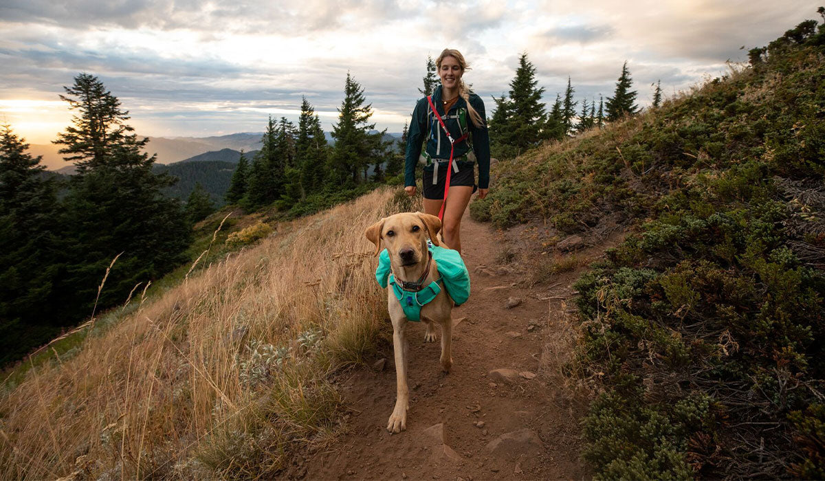 Woman walks along grassy trail at sunset with her dog attached using Switchbak leash around her shoulder.
