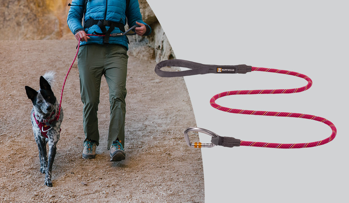Knot-a-Collar Rope Dog Leash