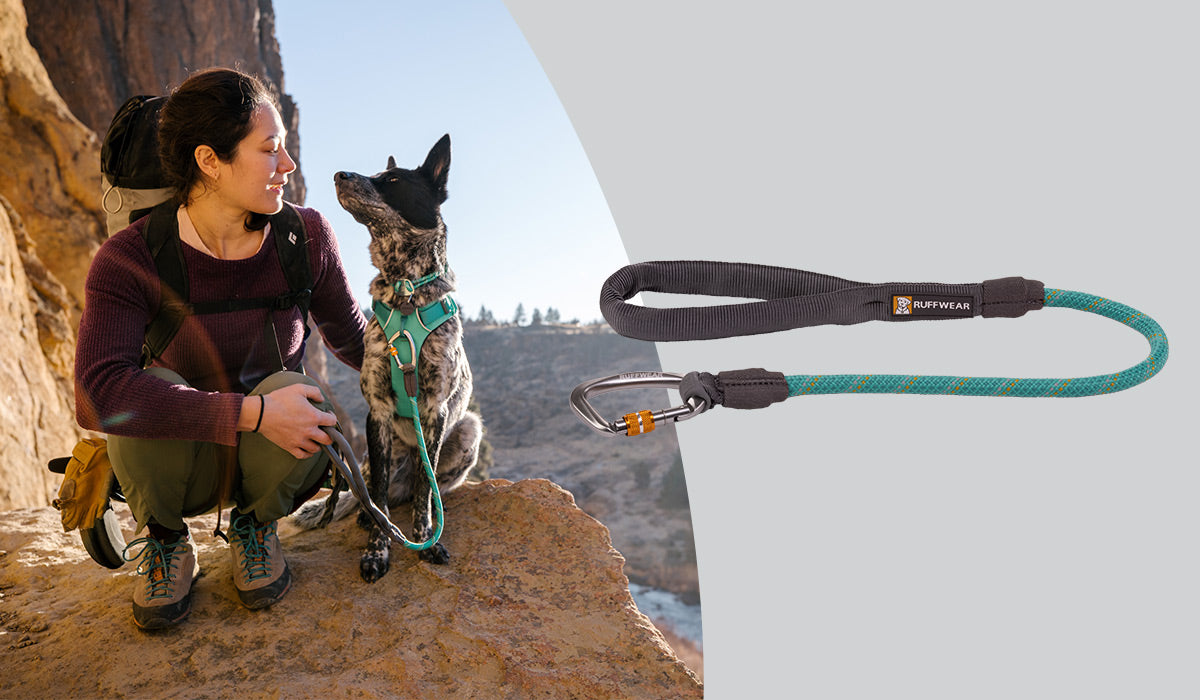 Knot-a-Long Short Rope Dog Leash