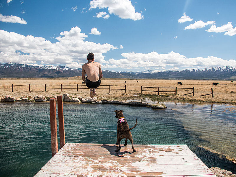 Trevor cannonballs into small lake while Kahlua stands on the dock looking down on him.