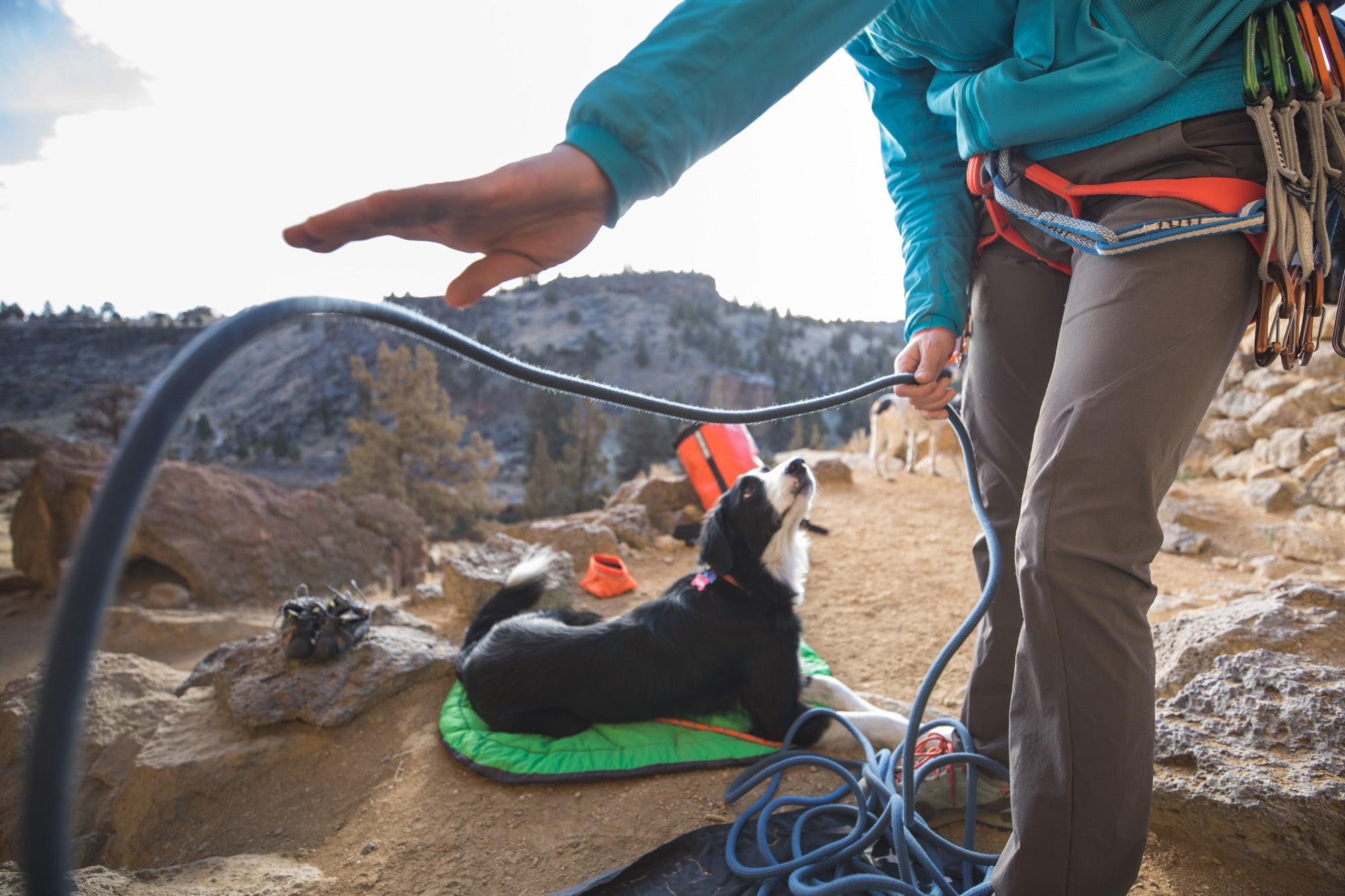 Woman gets climbing rope ready while dog looks on.