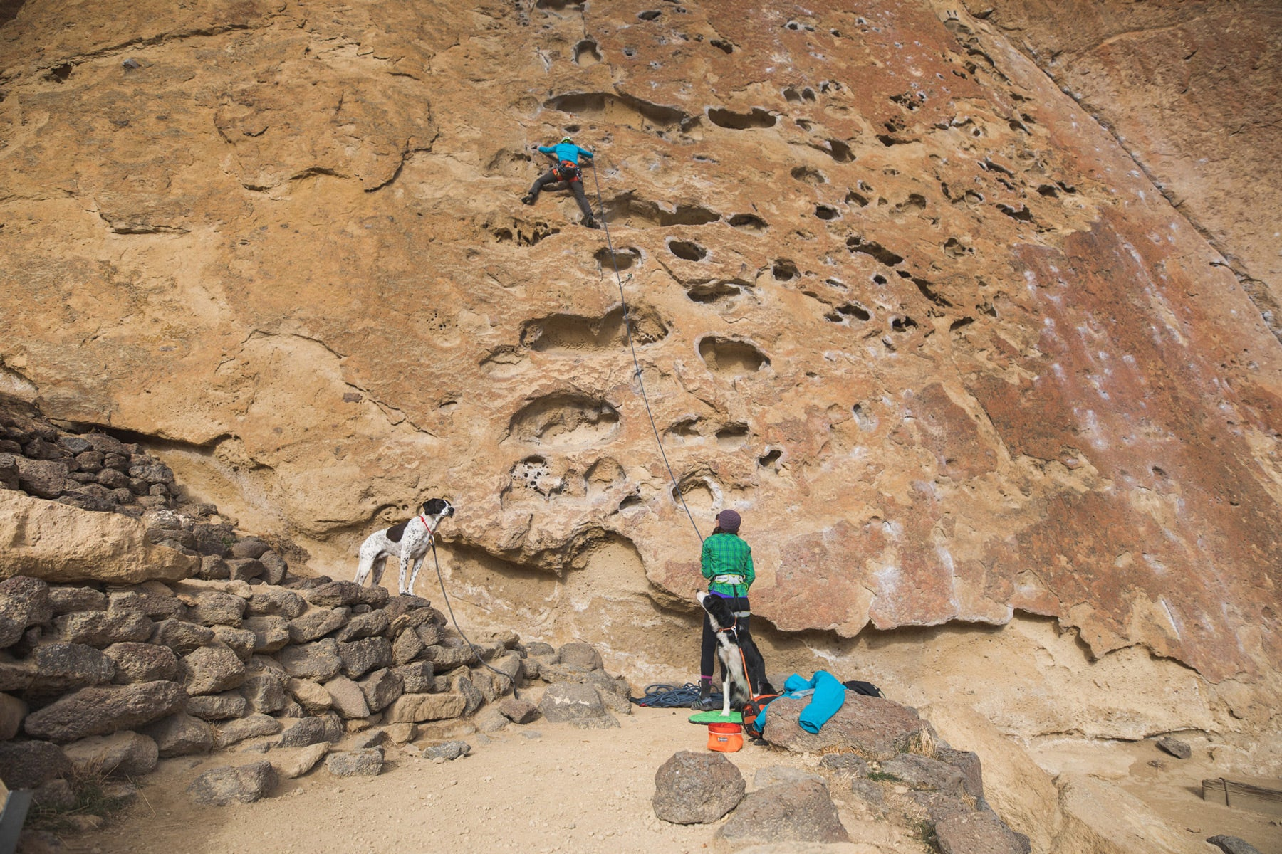 """Climber goes up the climb """"Five Gallon Buckets"""" while belayer and dog look up from below at the crag."""
