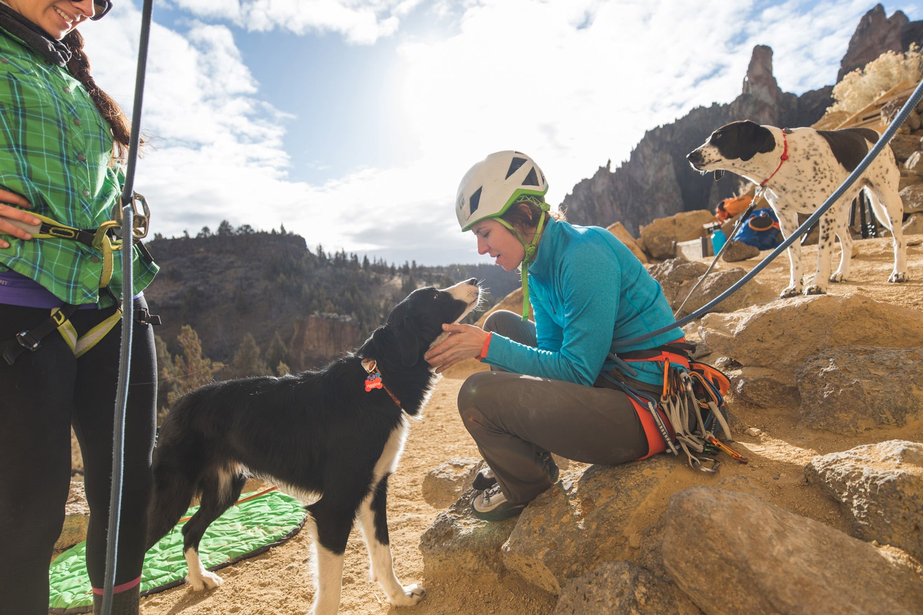 Border collie dog gives climber kisses after climb while other dog looks on.