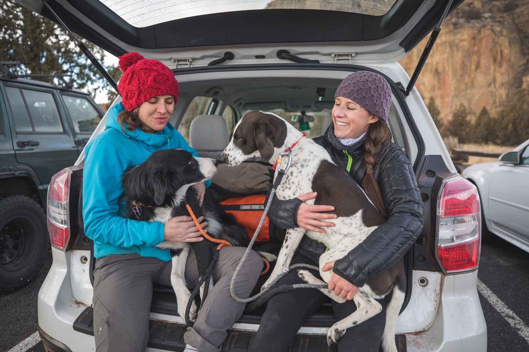 Two climbers with dogs in laps on knot-a-leashes sit in back of car celebrating the day.