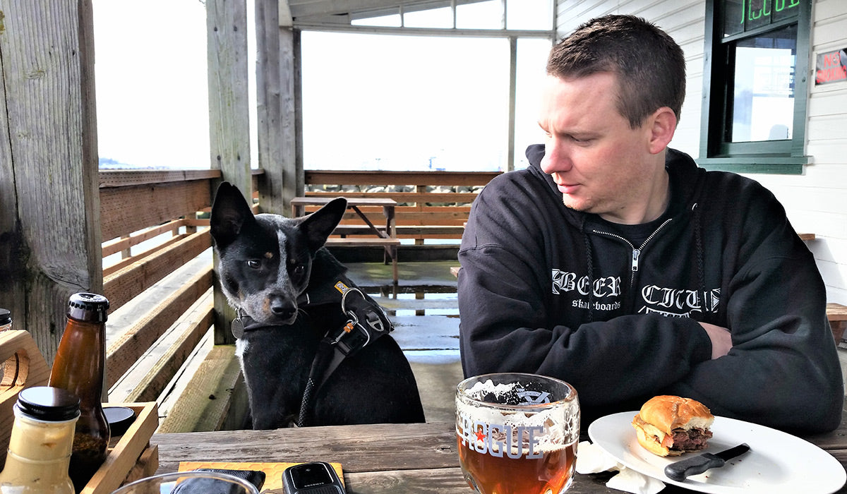 Daniel and his dog Maddie in front range harness sit at table at pub together.