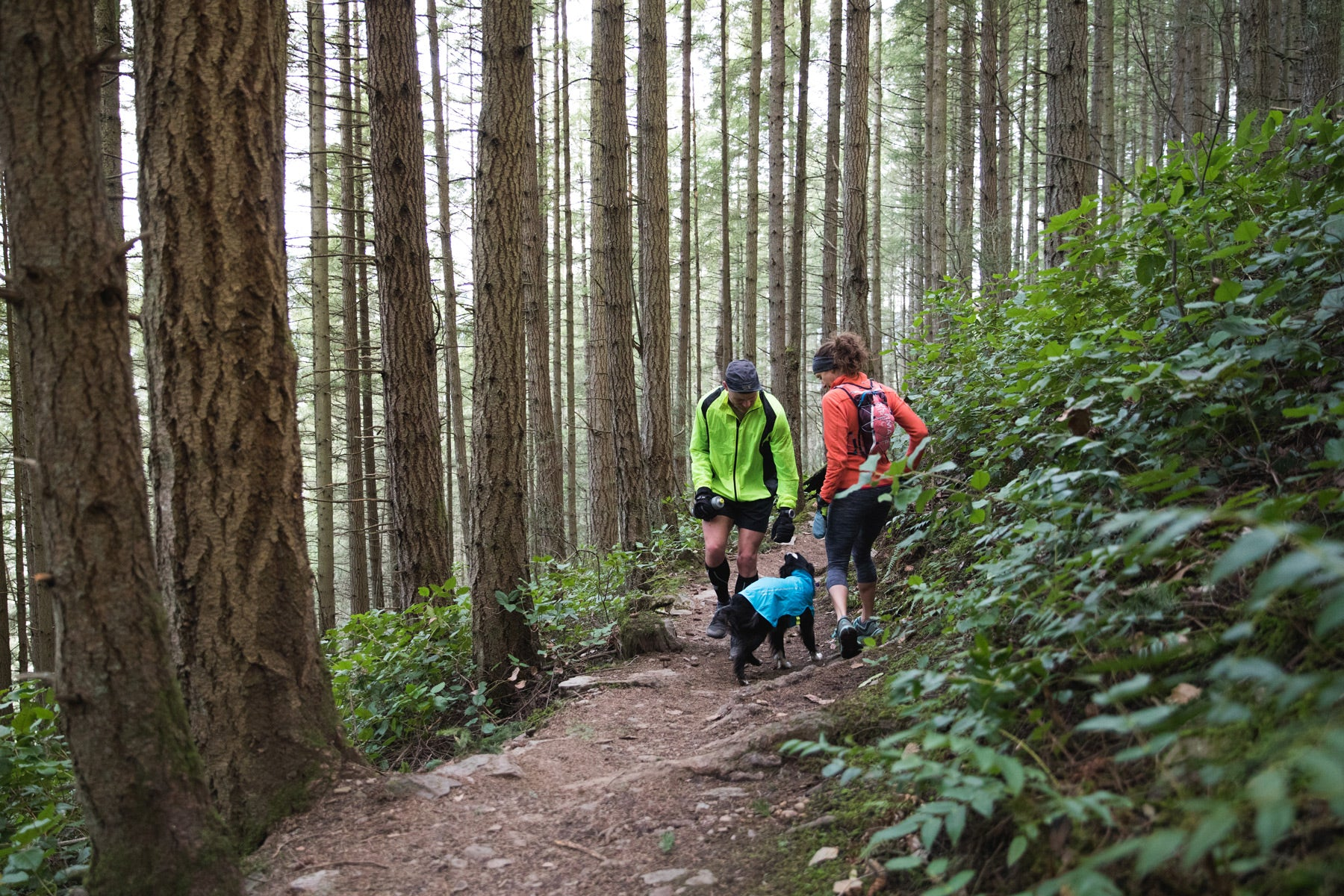 Krissy & PD greeting another trail user while on a trail run in the woods.