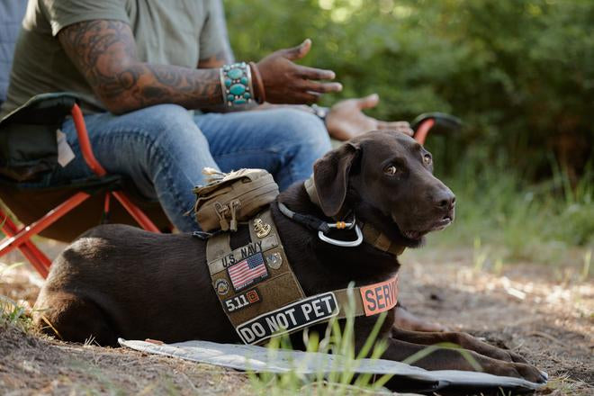 """Axe in service dog vest that reads """"Do not Pet"""" lays at Chad's feet outdoors."""