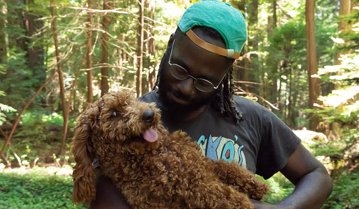 Human holding dog in a forest setting