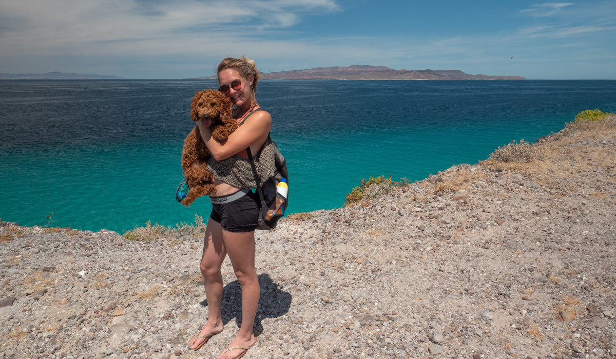 Human holding dog at a scenic overlook