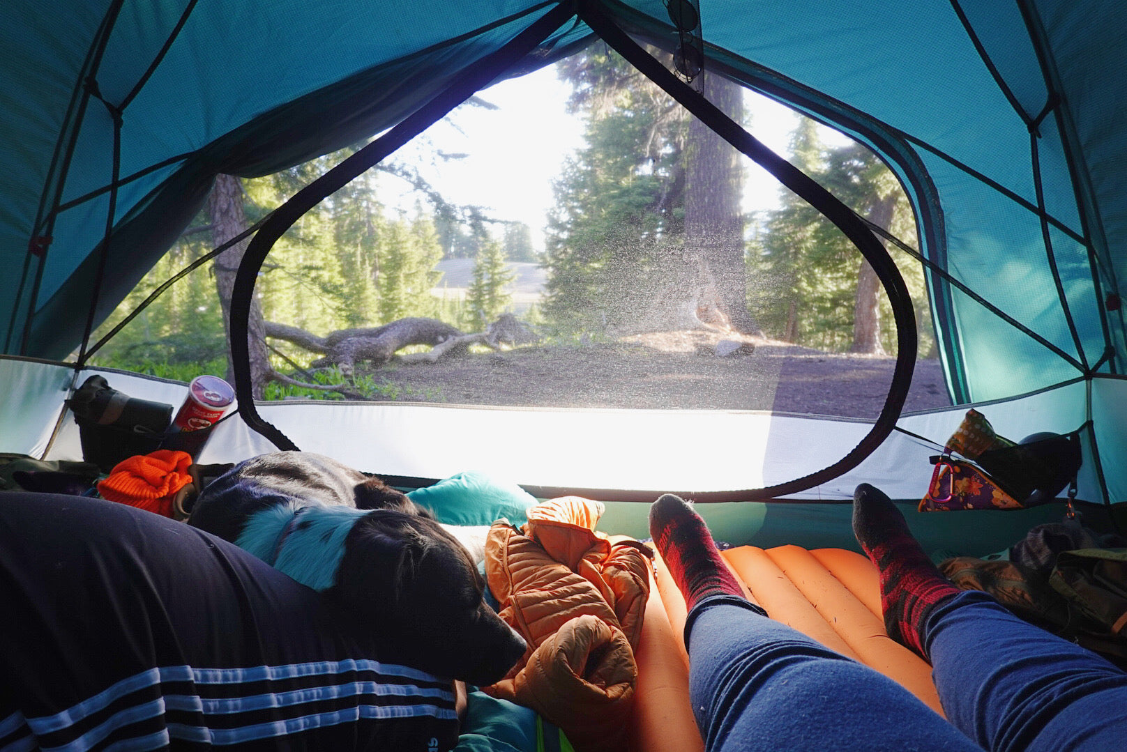 Two humans snuggled up with dog inside tent while camping.