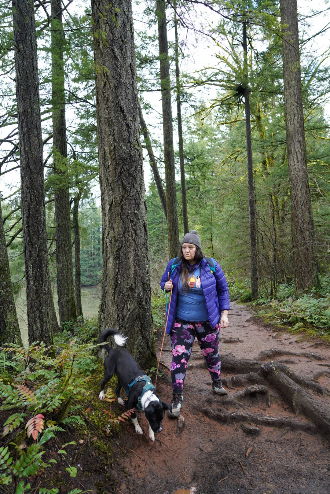 Jenny Bruso on hike in Oregon with dog in front range everyday harness.