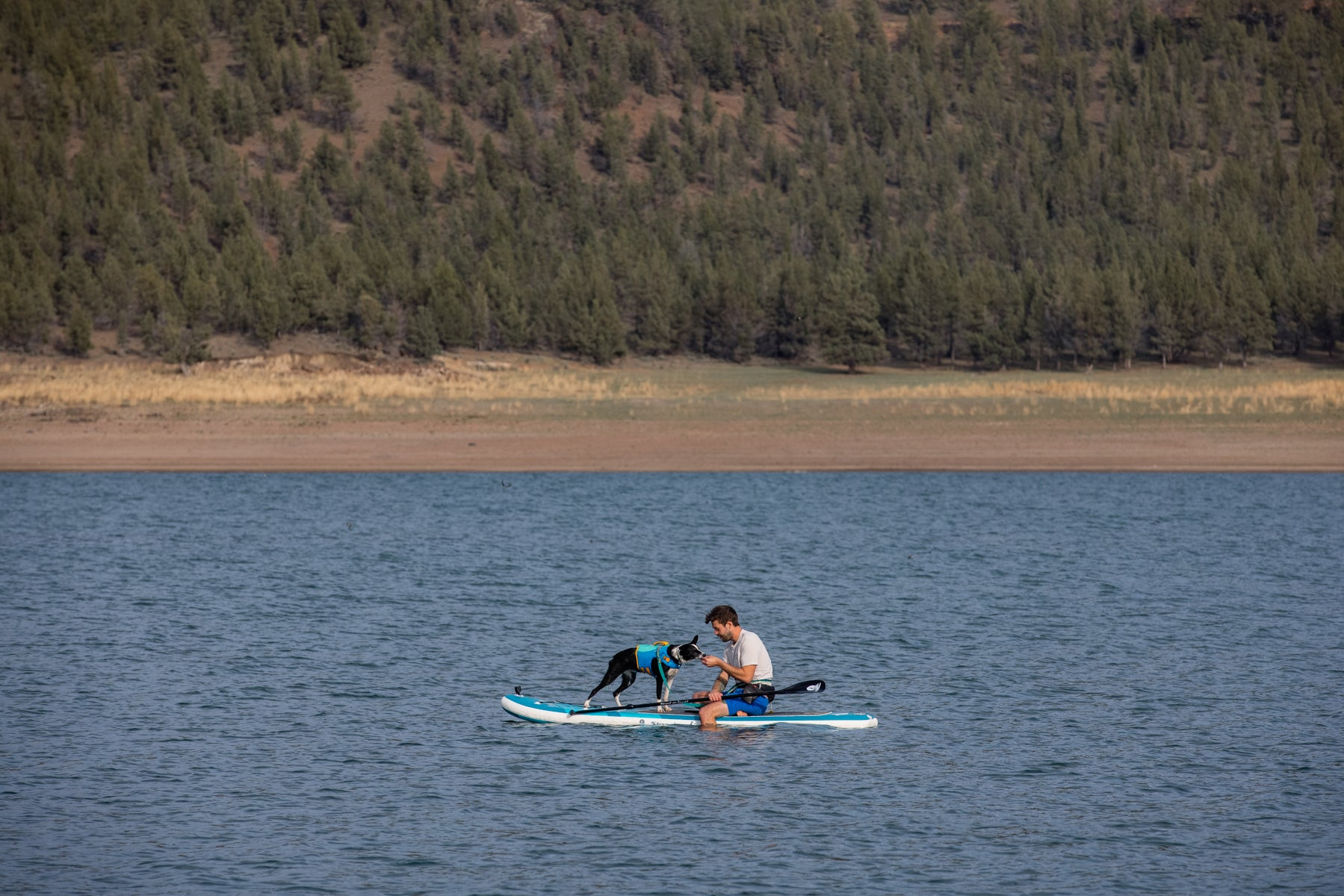 Human and Dog sitting on a paddleboard in a lake