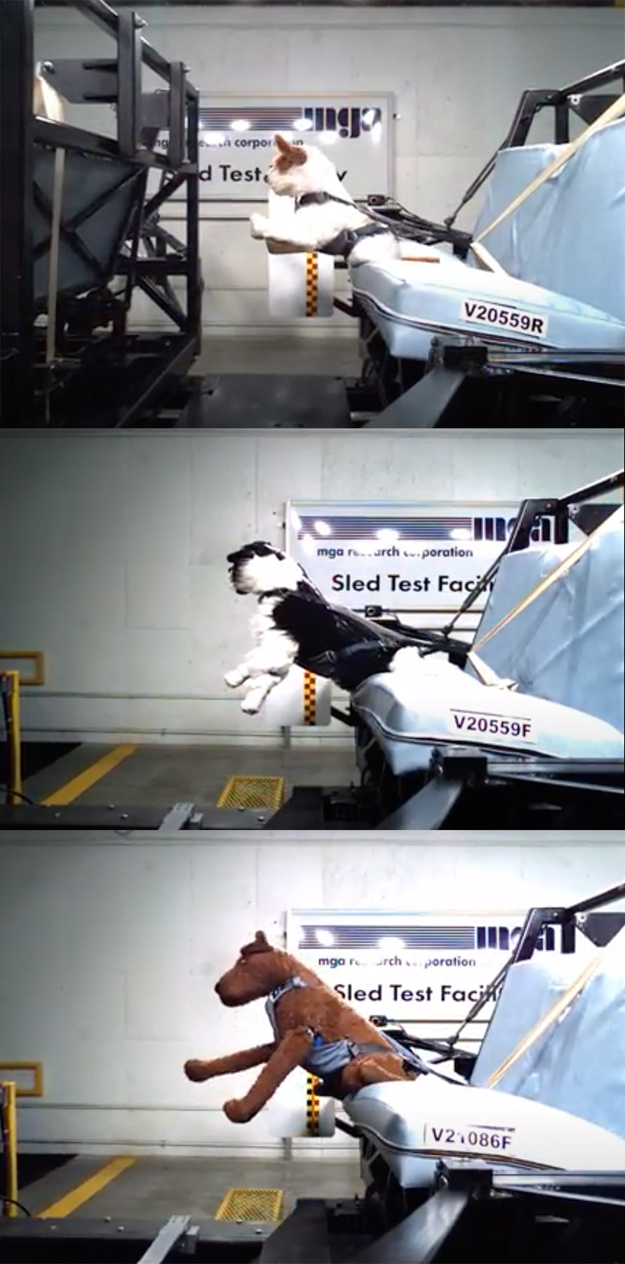 Three freeze frames of dynamic testing done on Load Up Harness with dog mannequins upright