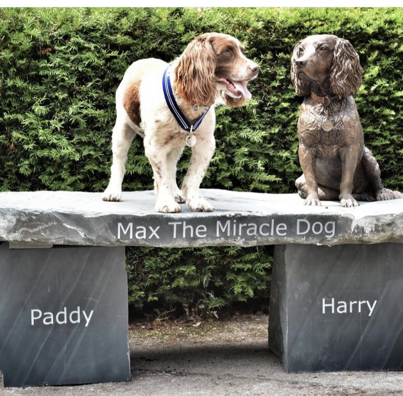 Max the miracle dog on a bench next to his bronze statue.
