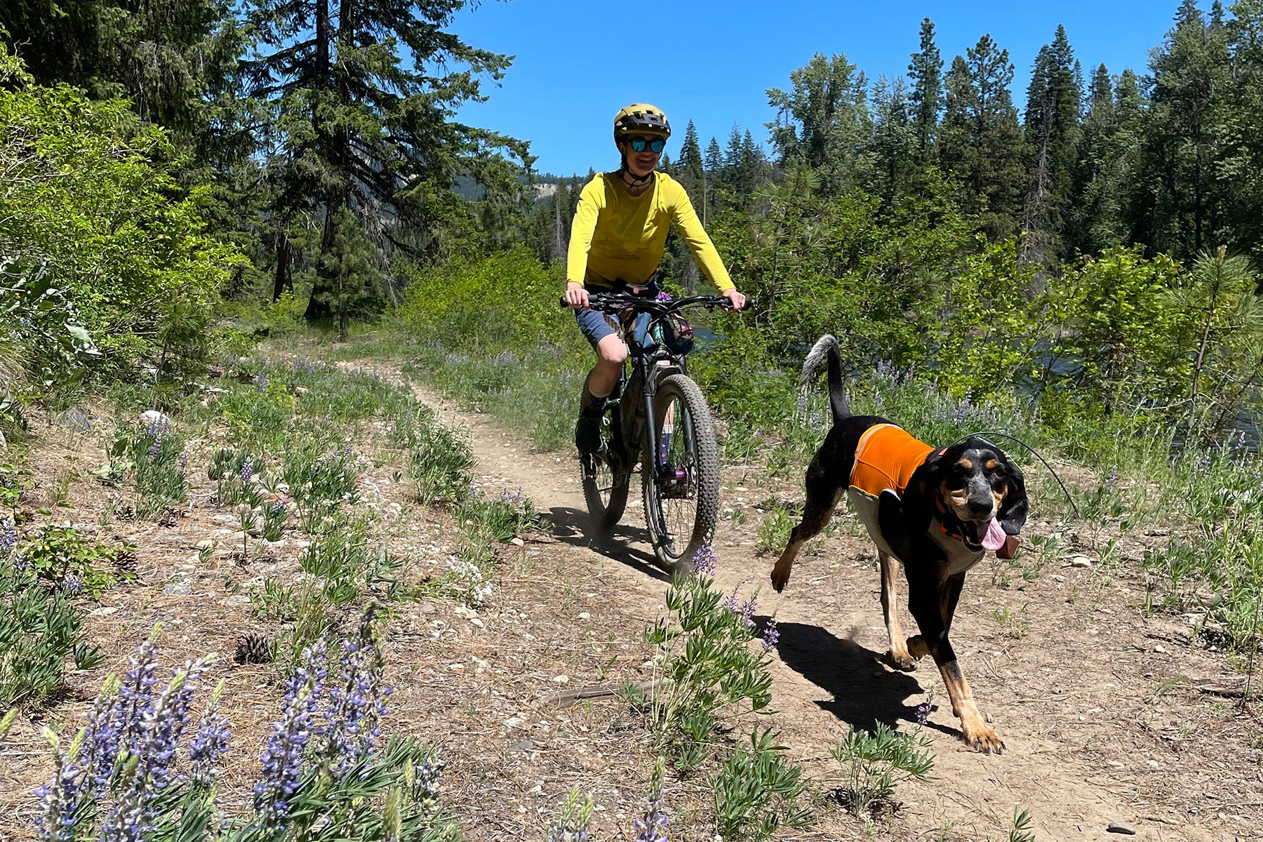 Laura and dog Colt mountain biking together