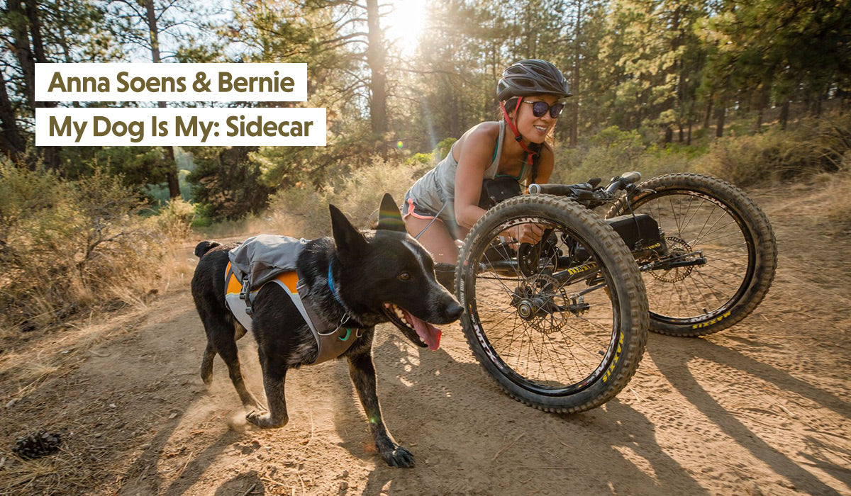 Anna on handcycle with dog Bernie in jet stream and switchbak at her side
