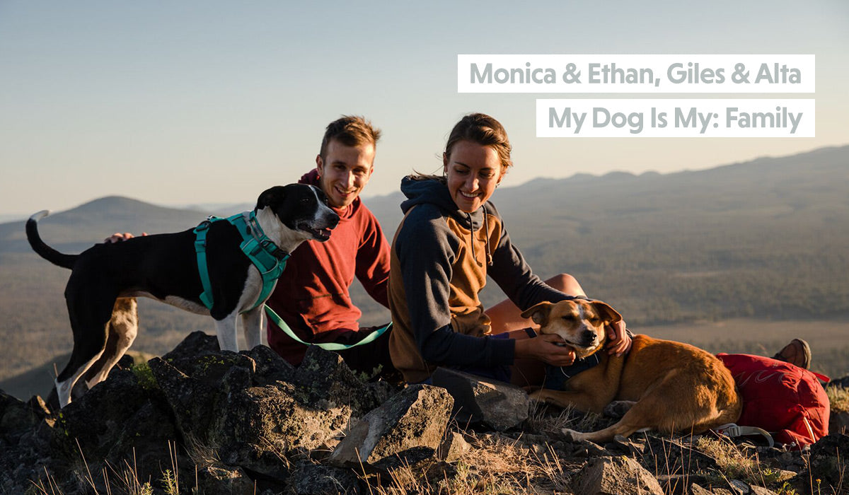 Monica and Ethan sit with pups Giles & Alta