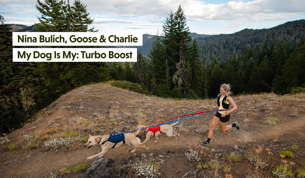 Nina trail runs with two Charlie and Goose on roamer leashes