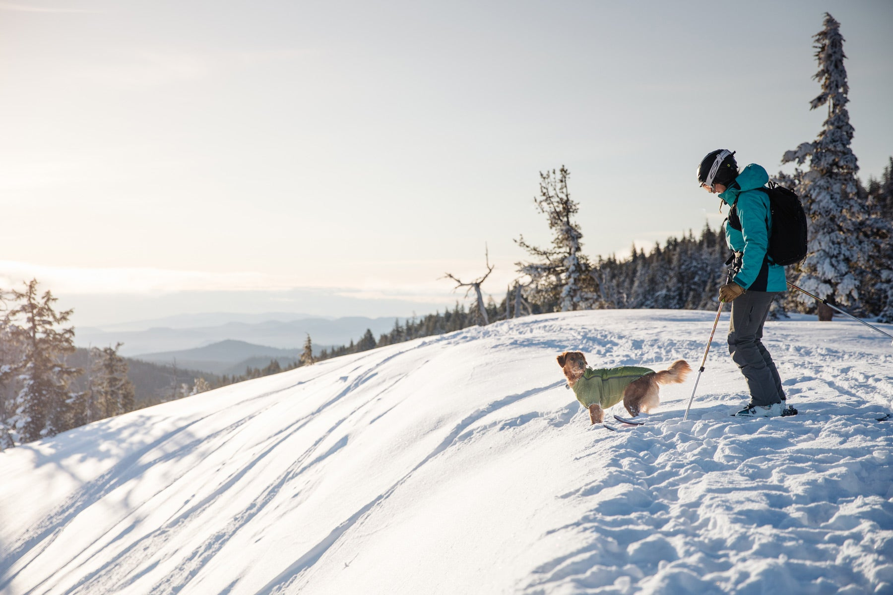 Elise and her pup Bailey (in powder hound) at the top of a ski slope ready to drop in.