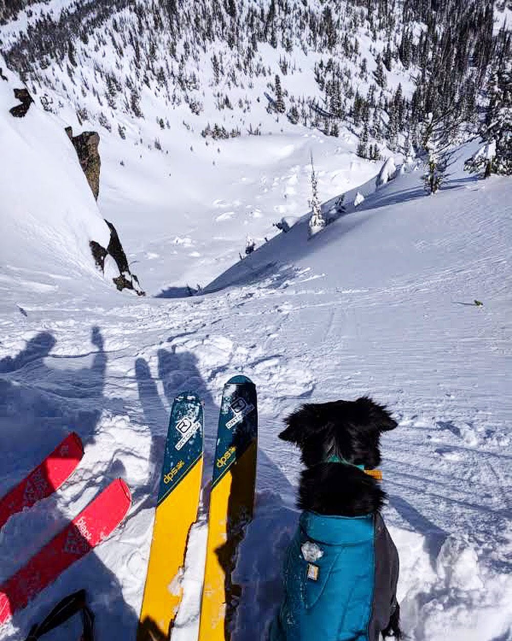 Alli and Riggins about to ski at the top of a steep chute.