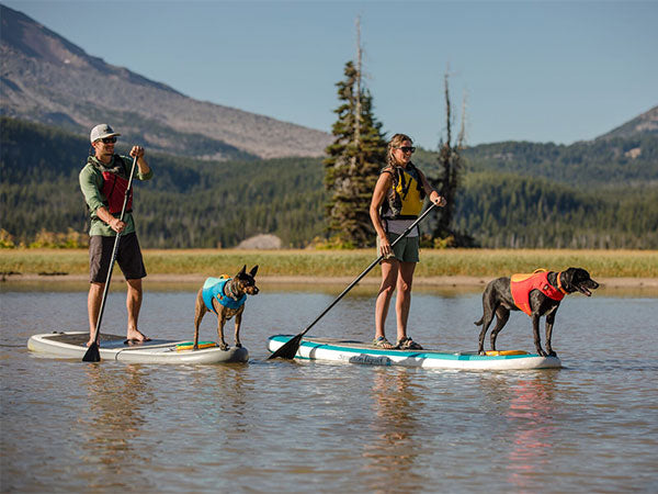 two humans on stand up paddleboards with their dogs in float coat dog life vests on the water.