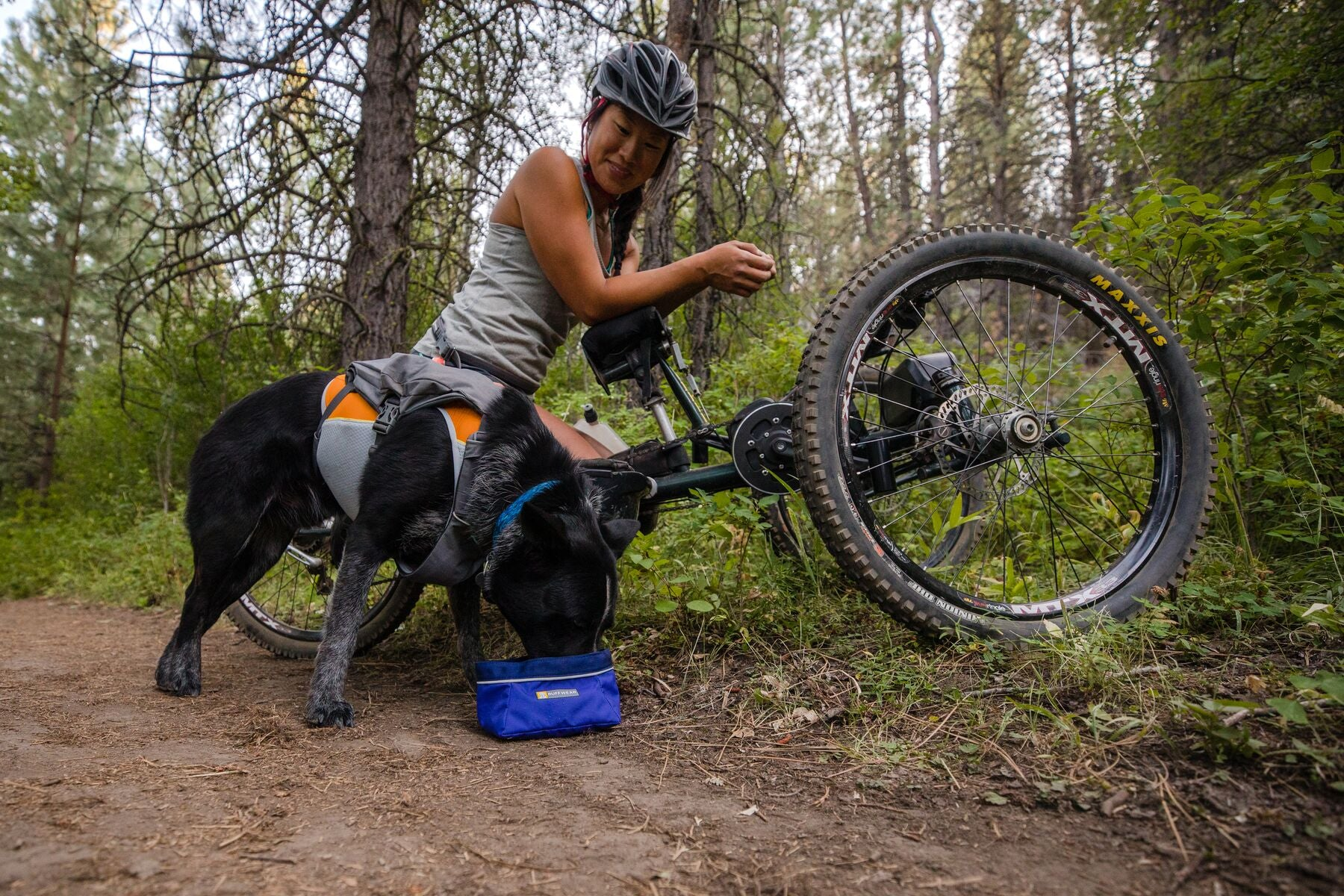 Adaptive athlete on a off road handcycle on trail while dog Bernie drinks out of quencher dog bowl at her side.