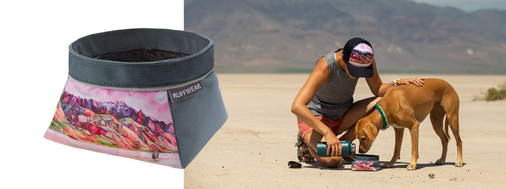 Dog drinks water out of artist series bowl in Alvord desert.