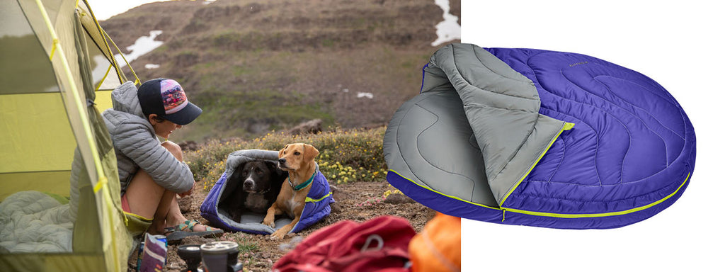 Two dogs in highlands dog sleeping bag next to their human sitting in the tent.