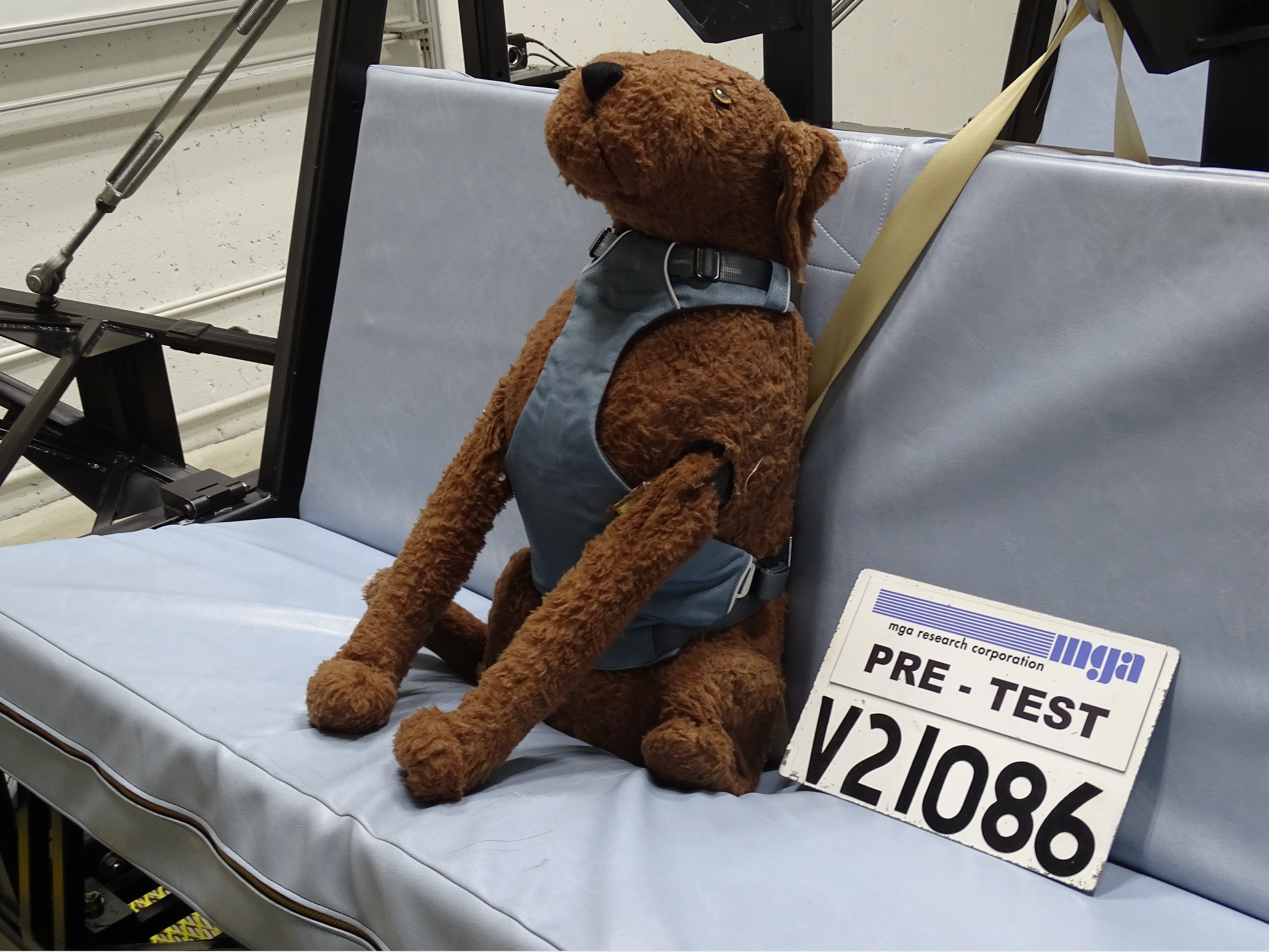 Dog mannequin wearing harness on car bench in a testing facility
