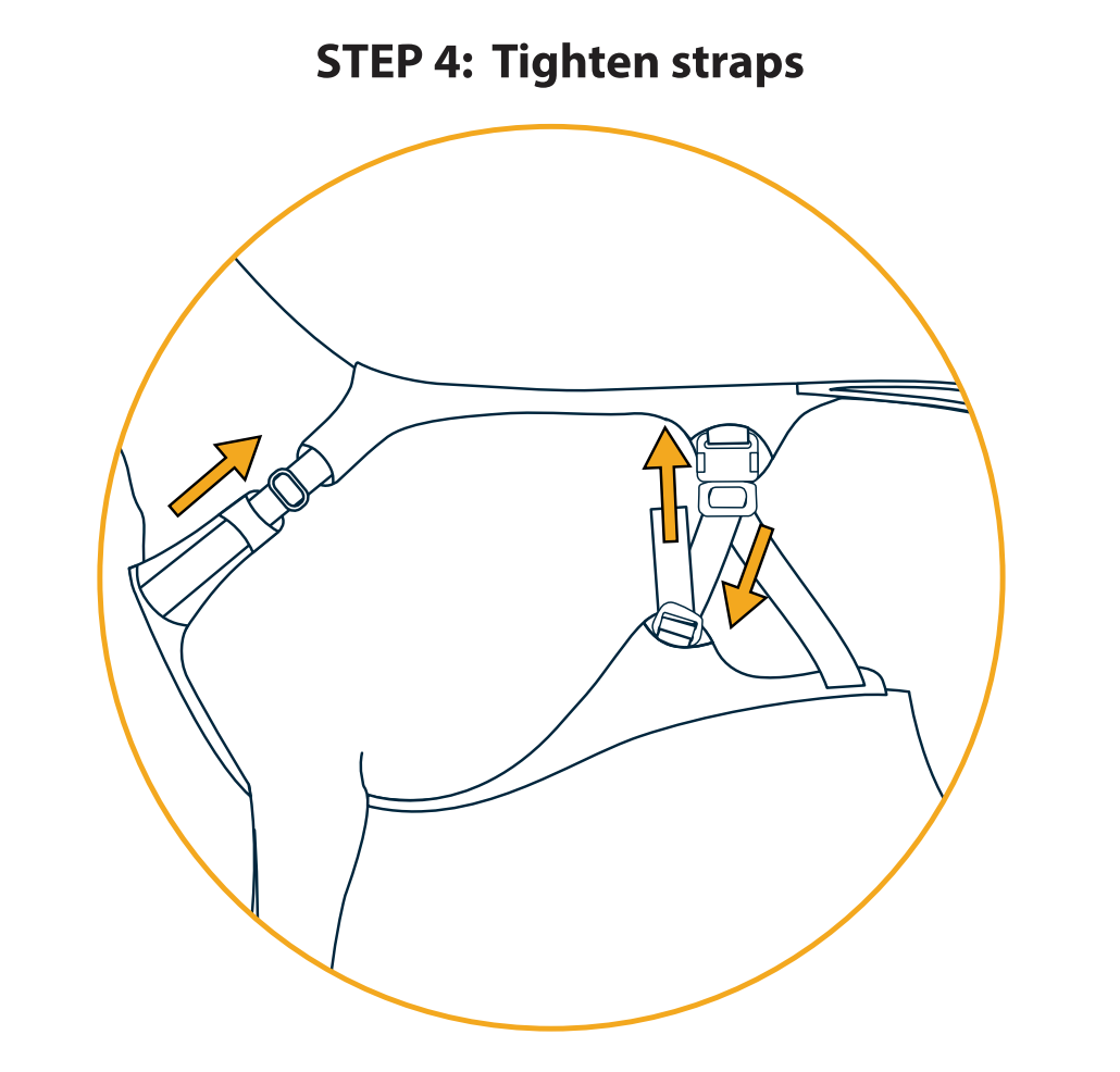 Step 4: How to Tighten Straps