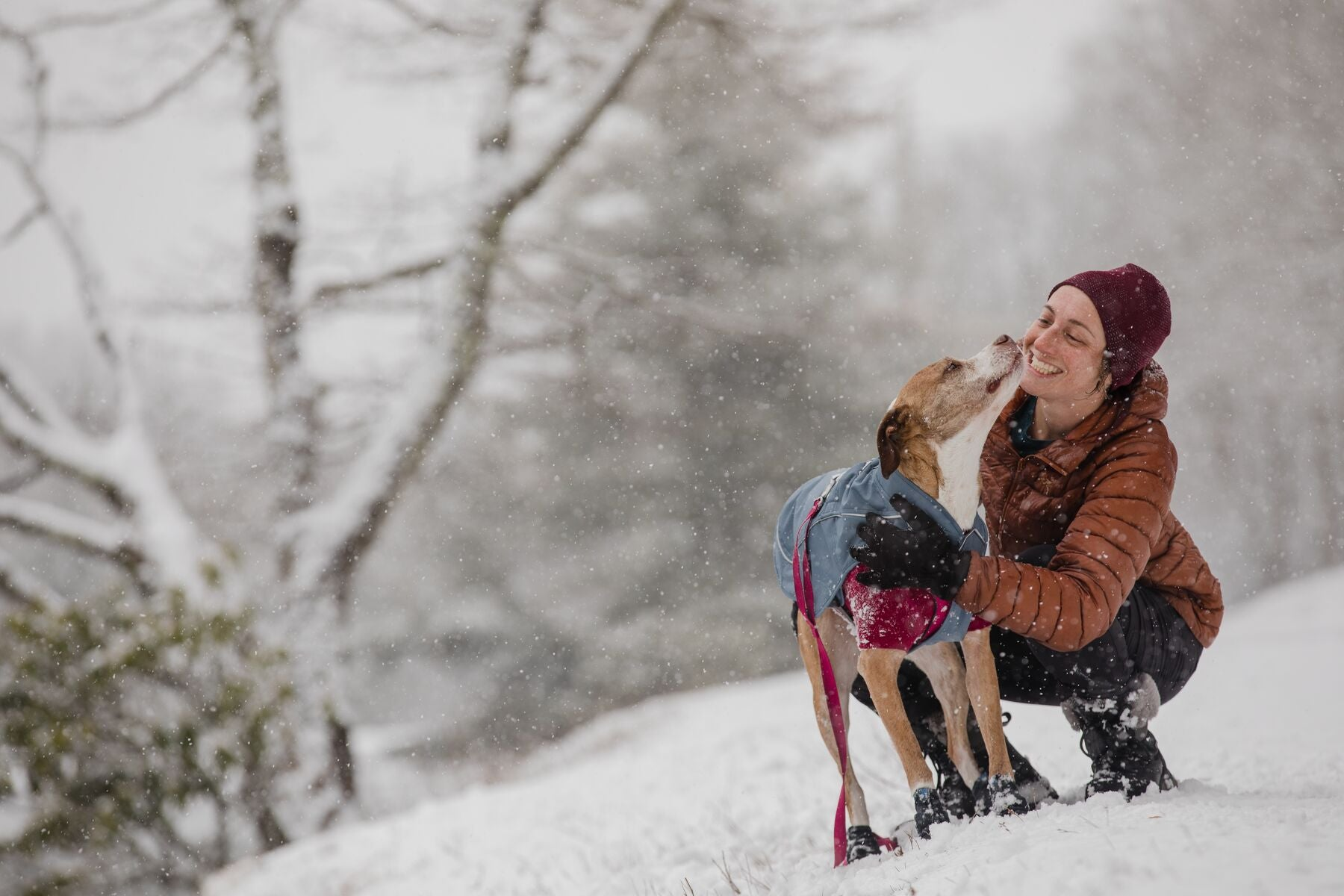 Woman stops to give pets to dog in snowy weather.