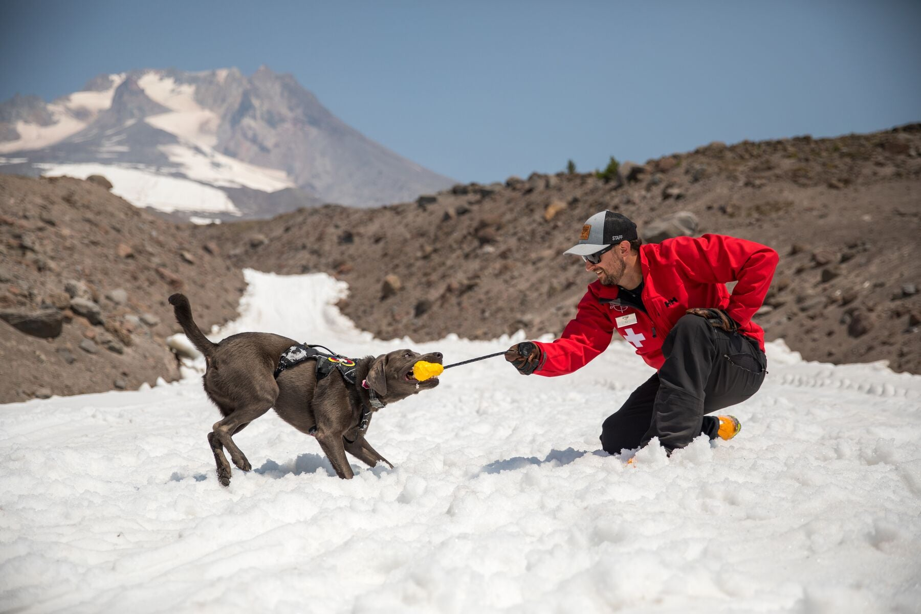 Patroller and dog play tug of war with huck a cone on Mt hood.