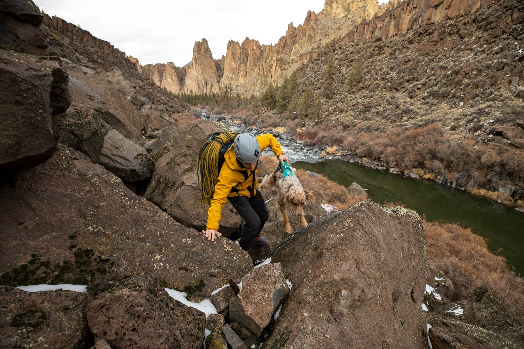 Climber lifts dog using web master harness with handle up onto rocks at the crag.