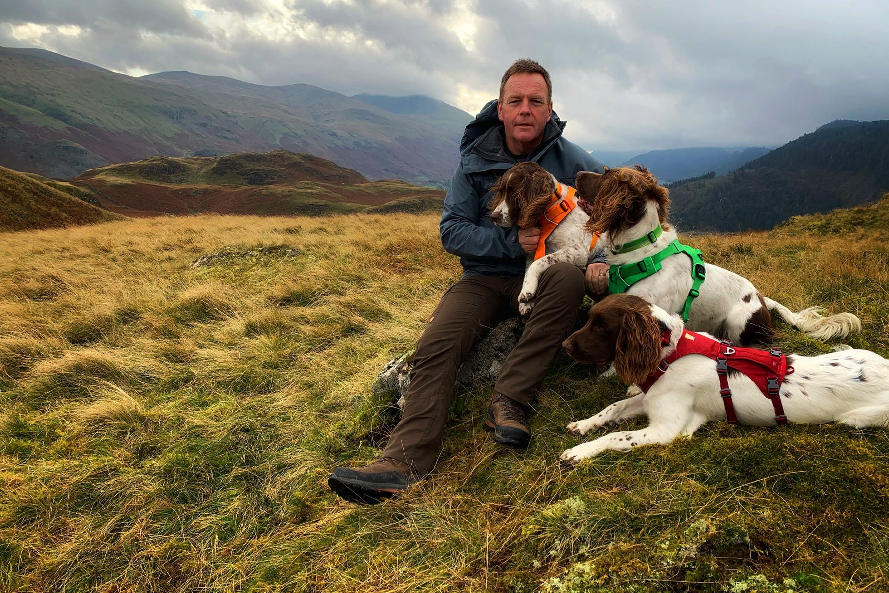 Ambassador Kerry with his three dogs in ruffwear harnesses outdoors.