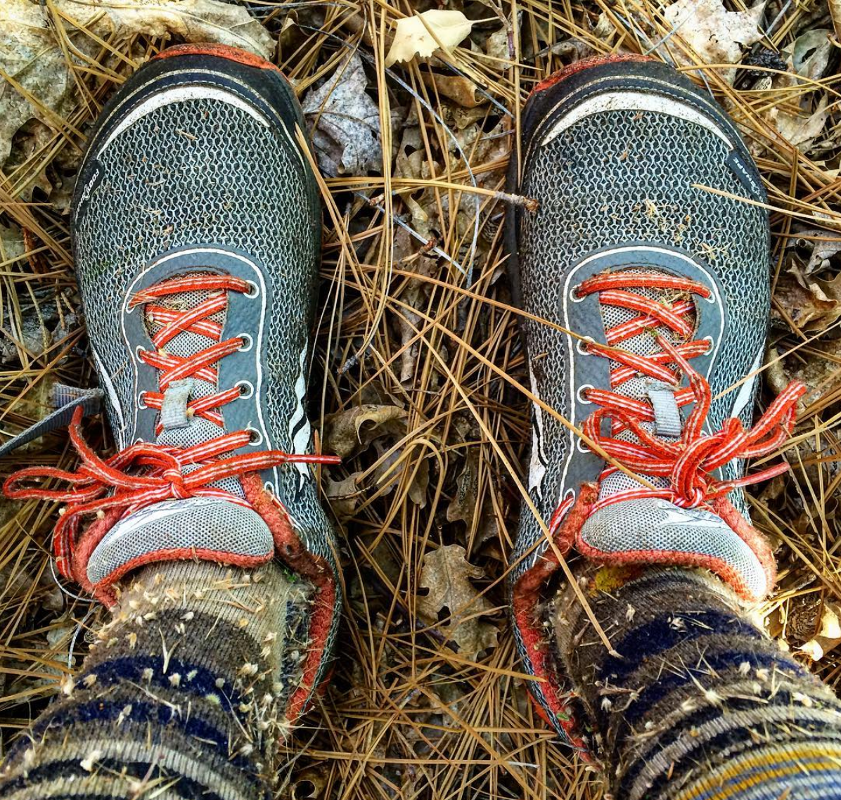 Alli's shoes and socks covered in burrs.